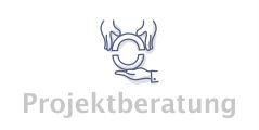 Icon Projektberatung